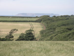 Looking North towards Lundy Island